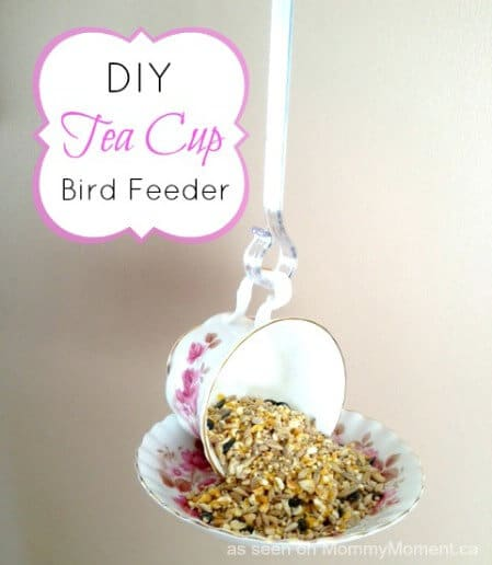 bird feeder made of a teacup