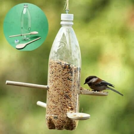bird feeder made of a plastic bottle