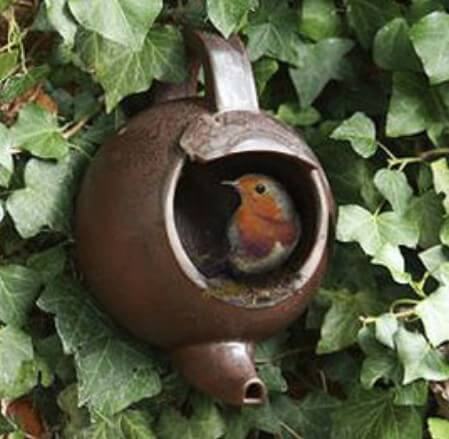 bird feeder made of a teapot