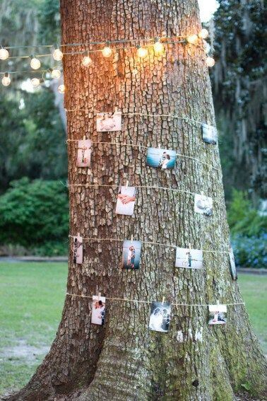 Backyard wedding tree decoration