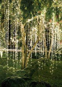 Backyard Wedding String Lighting