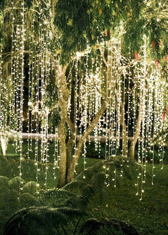 Backyard Wedding String Lighting