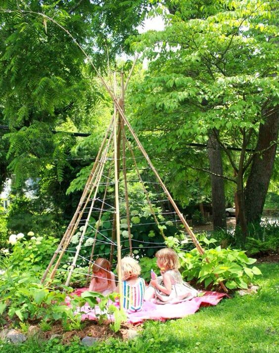 Garden teepee made of beanpoles