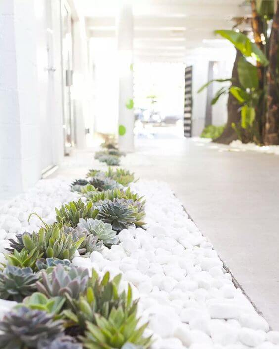 Pebble design with xeriscaping plants