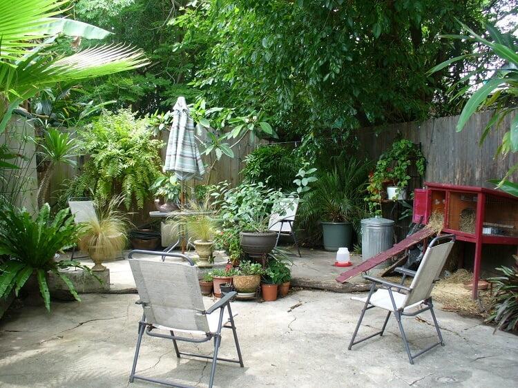 Backyard greenery and chairs