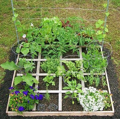 Square foot garden with sixteen squares