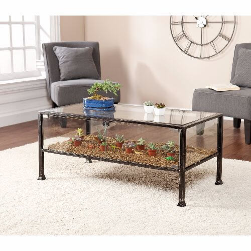 terrarium display coffee table