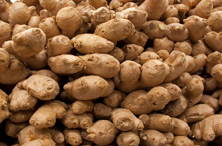 Mound of ginger rhyzomes