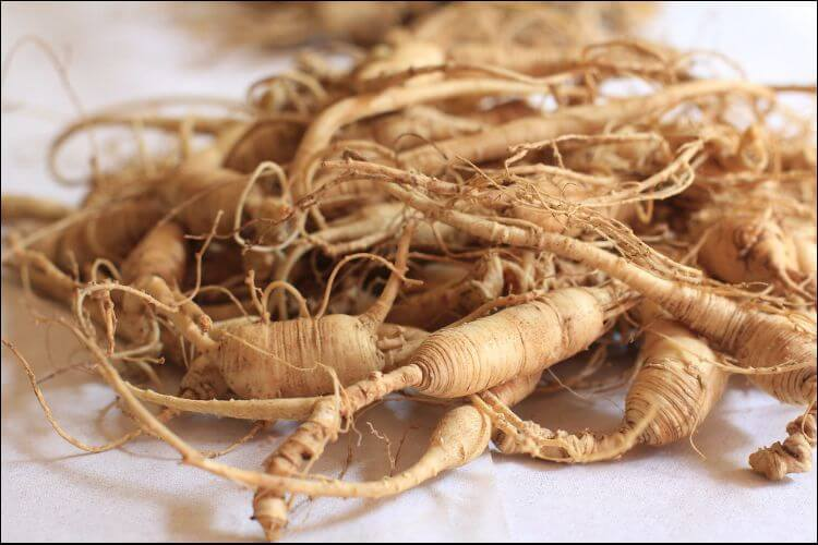 Close up of ginseng roots placed in a mound