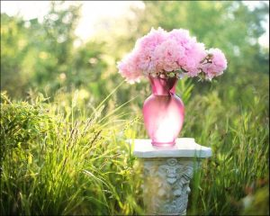 Pink peony vase placed on grey support in a garden