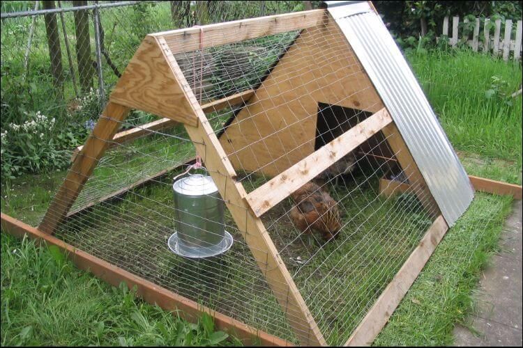 Chicken coop built on an A frame, seen from an angle on the side