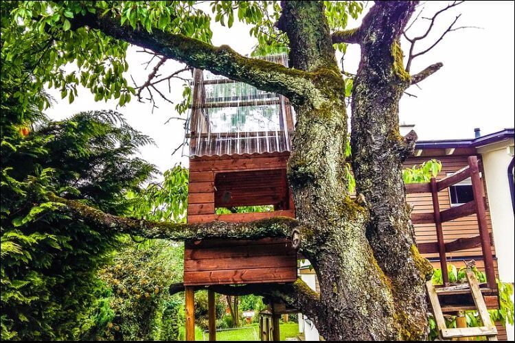 Children treehouse built on a strong old tree, with a white house in the background