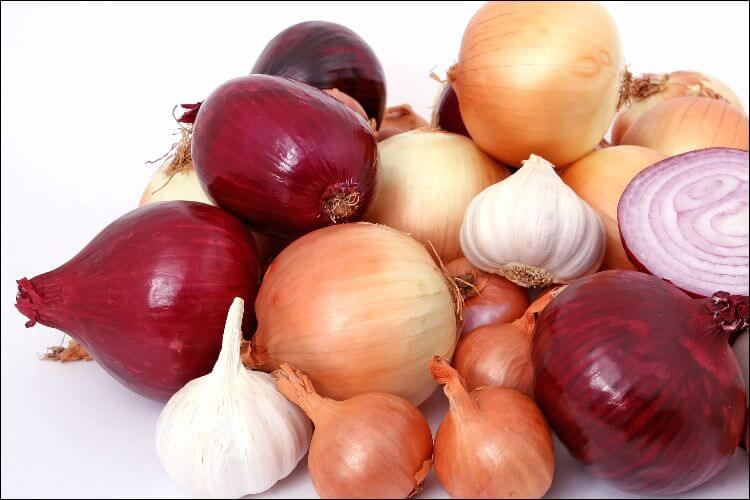 A bunch of colorful onions and white garlic