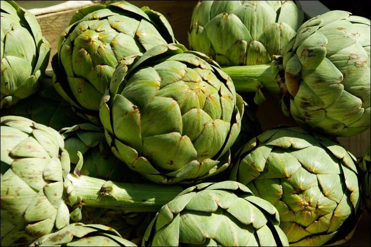 Mound of green artichokes sitting in the sun