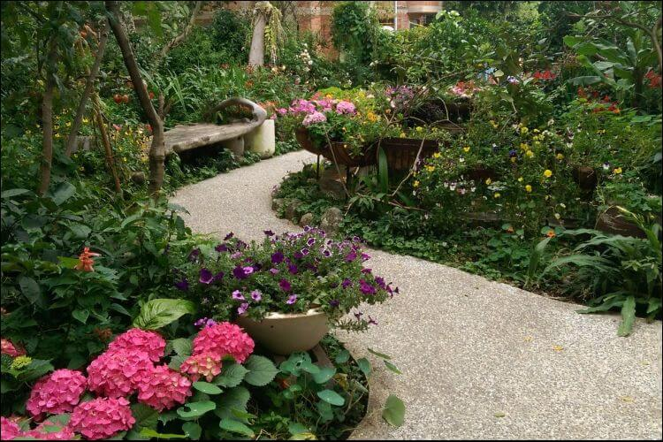 Walkway landscape with pink hydrangeas placed on the sides