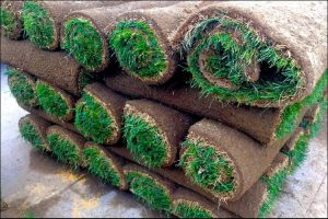 Five layers of rolled up lawn sods placed on the ground