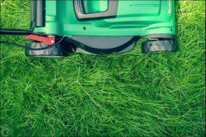 Green lawn mower on green grass