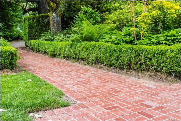 landscaping with bricks brick pathway