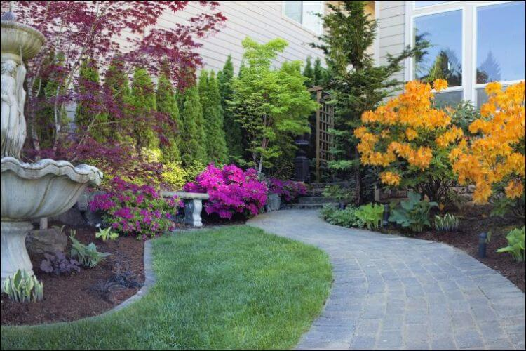 landscaping with evergreens colorful evergreen design