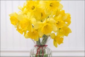 winter wedding flowers daffodil flower