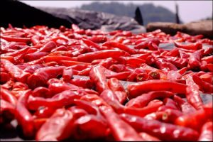 how to store garden vegetables dried peppers