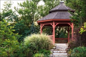 best trees for privacy private gazebo