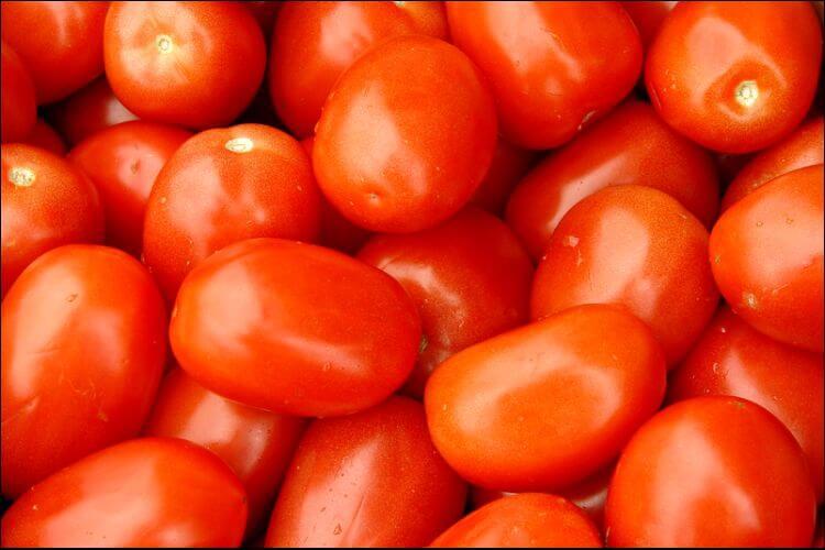 how to grow Roma tomatoes tomato mound