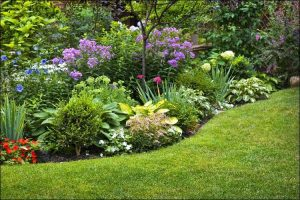 front yard landscaping ideas on a budget front yard jungle with flowers and bushes