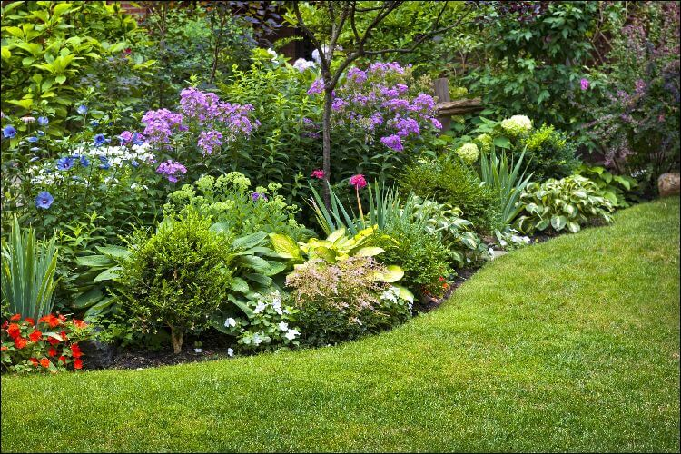 17 Simple Front Yard Landscaping Ideas On A Budget on basic flowers for front yard, basic pool landscaping ideas, simple front yard, flowers ideas for front yard, fencing ideas for front yard,