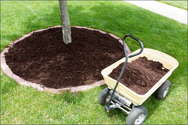 landscaping ideas with mulch and rocks round mulch design