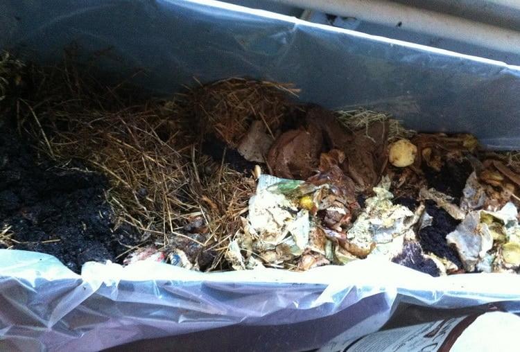 Organic waste in a bokashi bucket