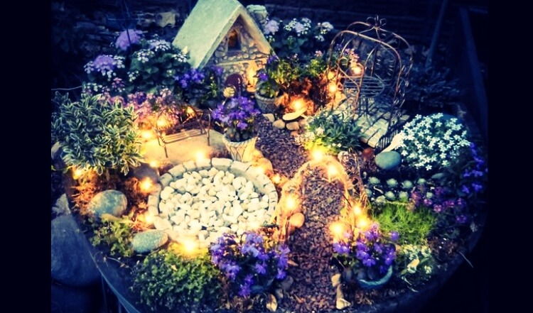 The garden of a fairy house