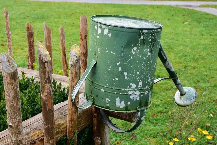 Watering can hung on a fence