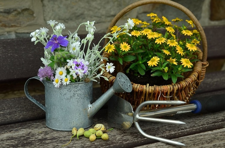 Flowers in a watering can next to a flower basket
