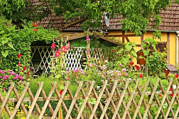 Garden with a beautiful wooden fence