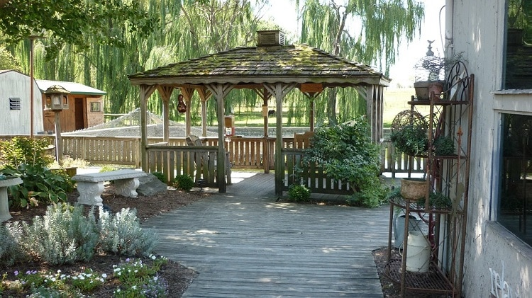 Gazebo on a wooden patio