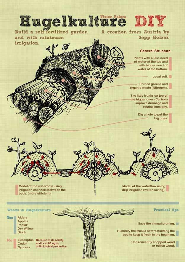 mound gardening infographic