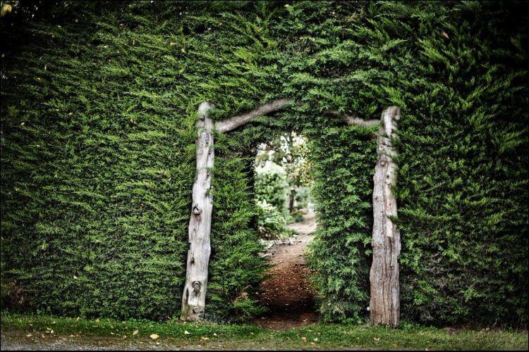 secret garden landscaping lush secret garden