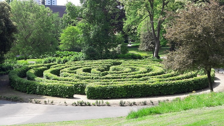 Vegetation labyrinth in a garden