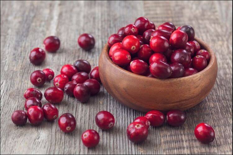 how to grow cranberry red cranberries
