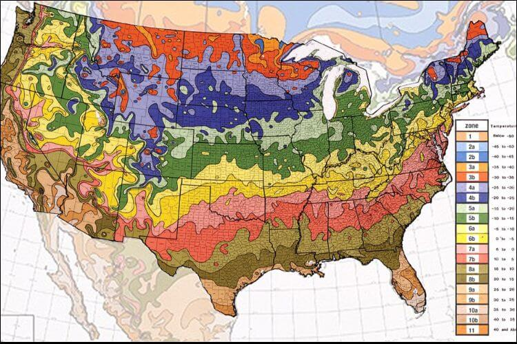 what to plant in January USDA hardiness zones map