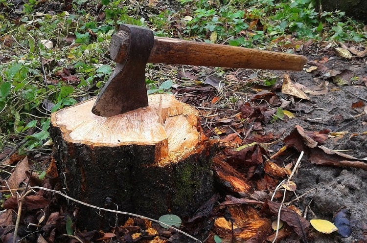 Axe stuck in a tree stump