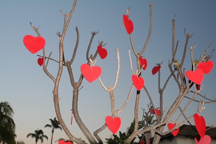 Hearts hanged in a tree