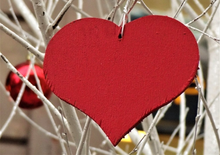 Wooden heart hanged in a tree