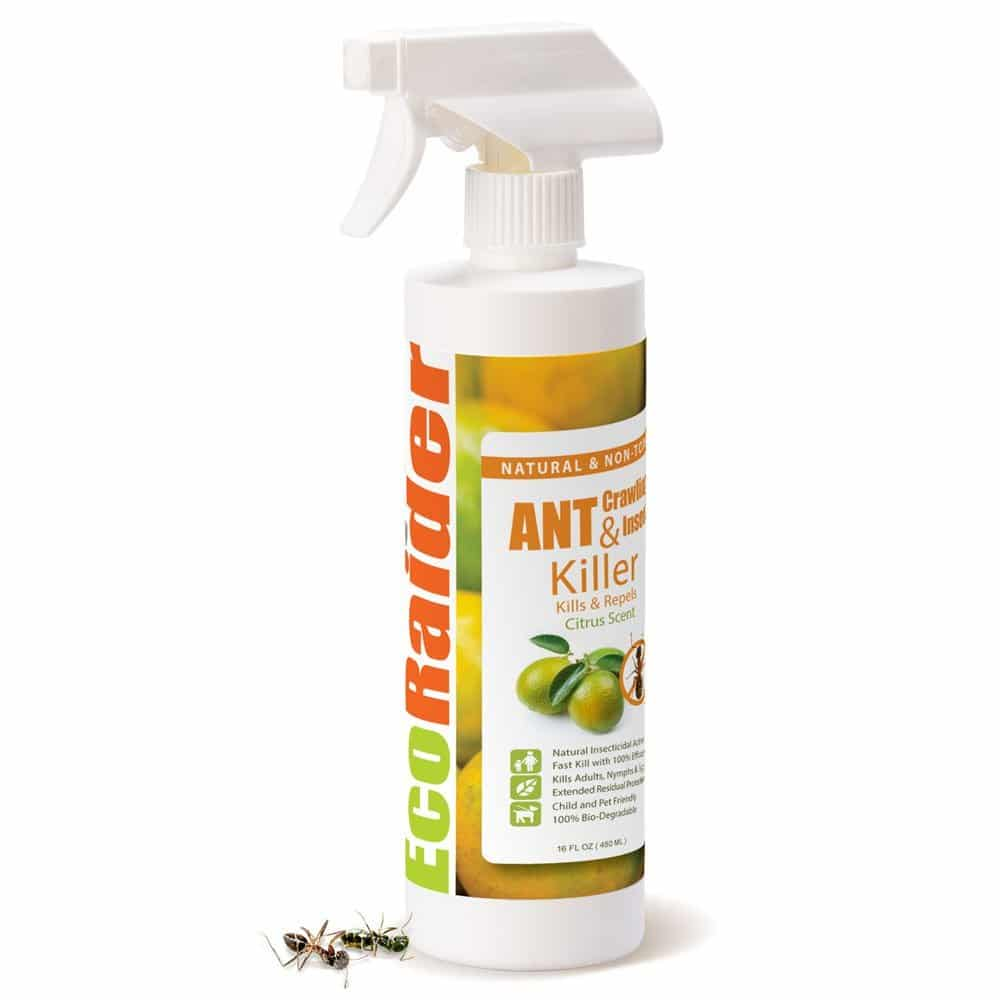 EcoRaider Ant Killer & Crawling Insect Killer