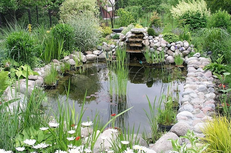 Water garden with a pond, a tiny waterfall, and a beautiful stone edging
