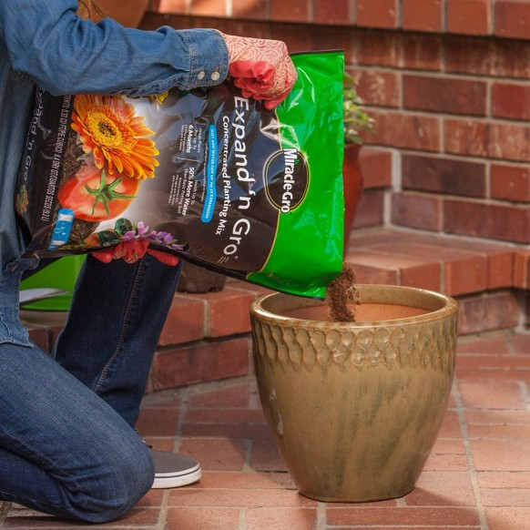 Miracle-Gro Expand 'N Gro Potting Soil Review