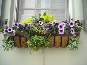 ways to create more curb appeal, cheap and easy ways to create more curb appeal