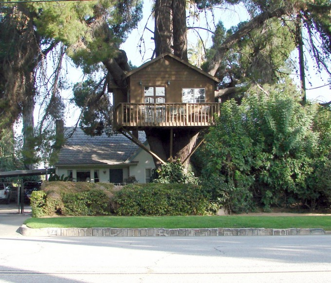 The Steps To Building A DIY Treehouse