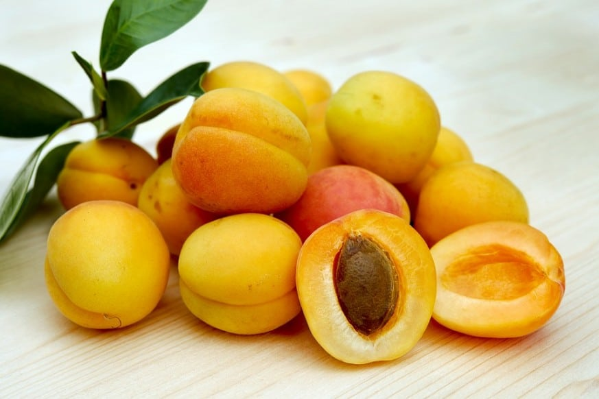 ways to use fresh apricots